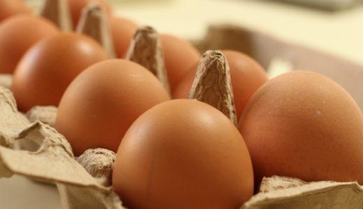 最強の栄養食と言われる卵!どんな栄養や効果があるのか徹底解説!